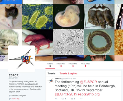 @EuSPCR: the new official twitter account for the ESPCR